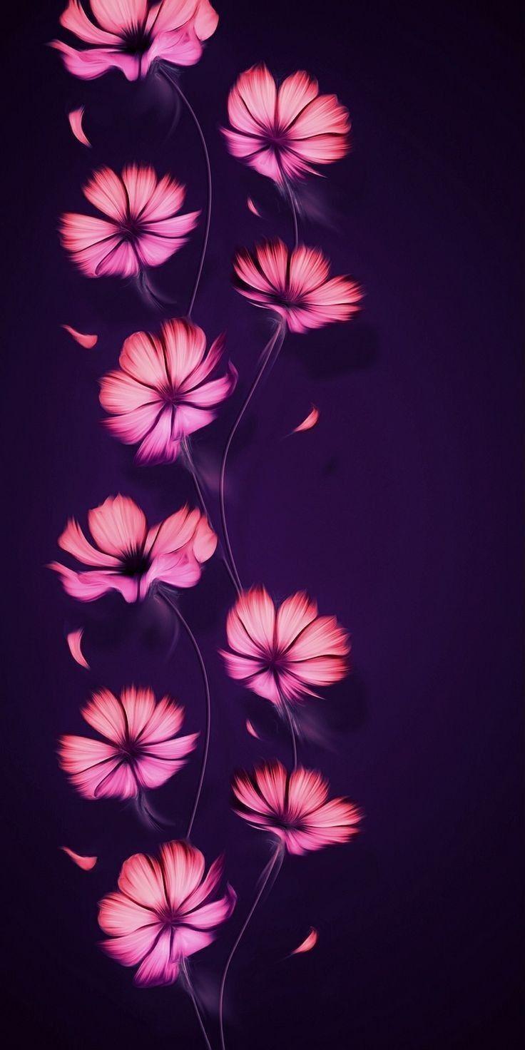 Smooth Flower Hd Wallpapers Flower Wallpaper Cute Wallpapers Beautiful Flowers Wallpapers