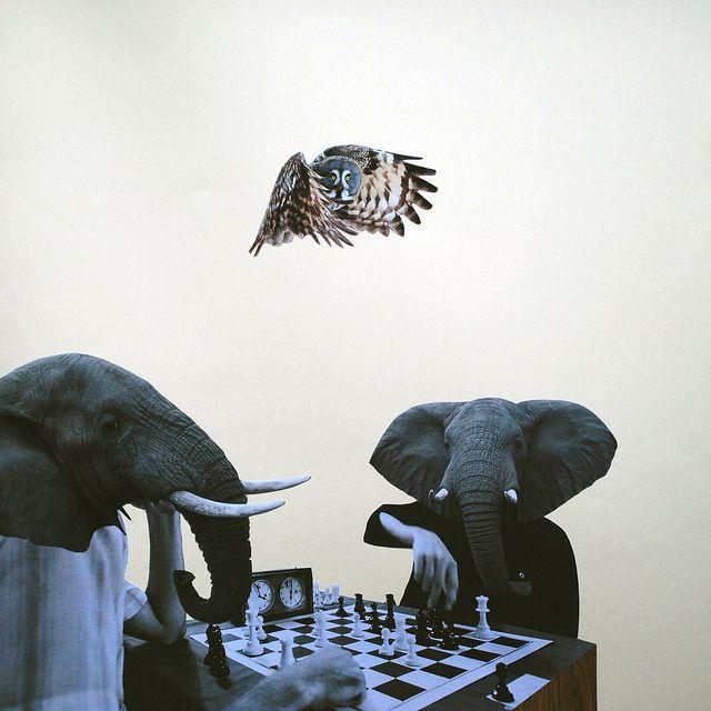 Ganeshas by ©Marina Molares