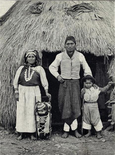 Conceptos de enfermedad y sanación en la cosmovisión Mapuche e impacto de la cultura occidental