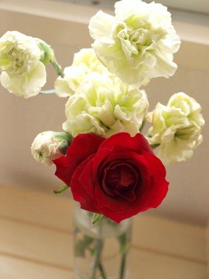 赤いバラと 白いカーネーションも 追加された。