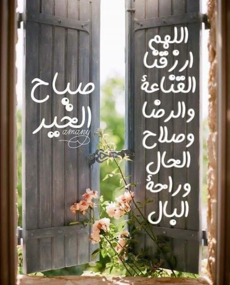 Pin By محمد فضل الآنسي On صباحكم خير In 2020 Good Morning Images Flowers Beautiful Morning Messages Good Morning Images