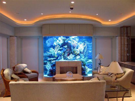 Custom Built Fish Tank | Joy Studio