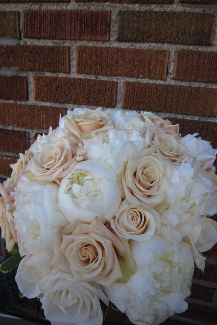 30 Best Pink Amp Peach Rose Ombre Images On Pinterest Roses Peach Rose And Rose Flowers