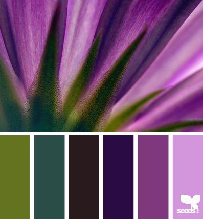 Radiant orchid palette inspiration from Design Seeds. designseeds.com
