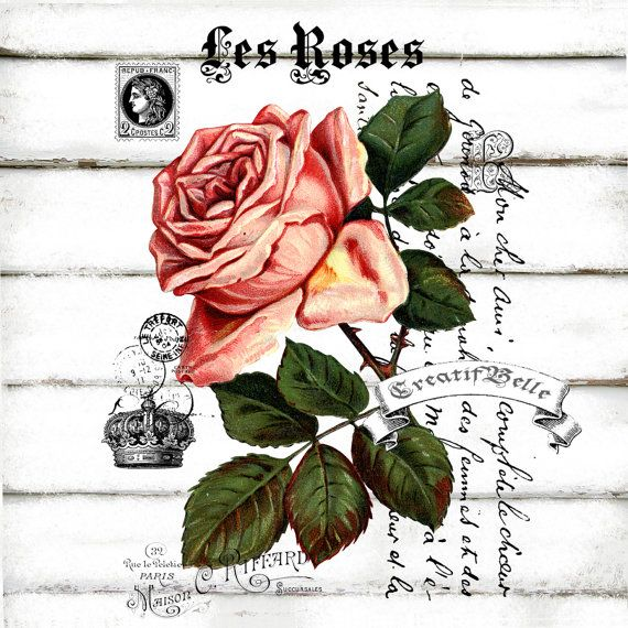 French Vintage Les Roses Large A4 Instant Digital by CreatifBelle