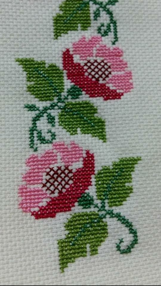 Rosas p. de cruz