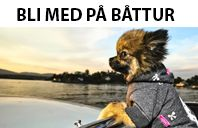 Gratis båttur i Oslofjorden 6. august. Oppmøte Riverside ungdomshus 10.30. Ta med regntøy hvis fare for regn :-)