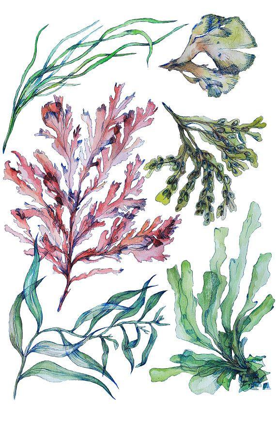 Art Print of original Watercolor painting    Sea