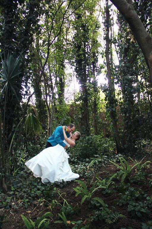 Lavish green gardens for those rain forest feel photos