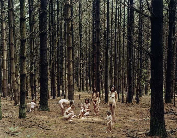 Justine Kurland Pine Forest 2005 C-print 30 by 40 in.  76.2 by 101.6 cm.