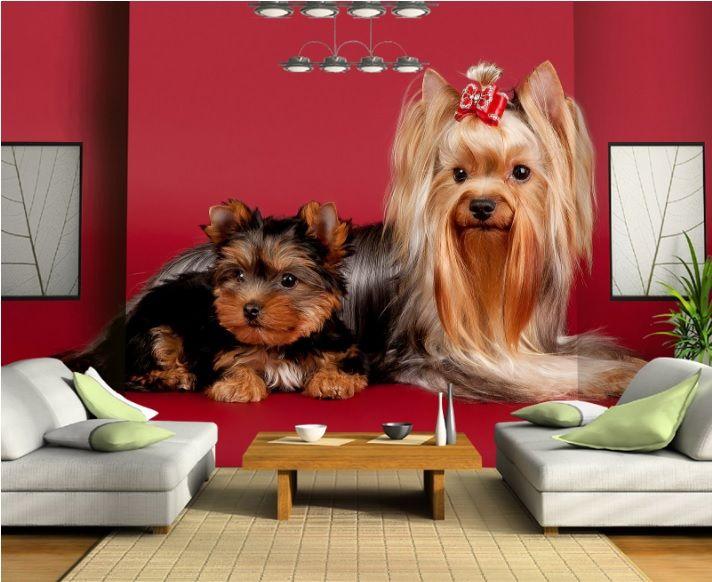 Yorkshire Terrier 3 Boyutlu Duvar Kağıdı  #3boyutlu #duvarkağıdı #3d