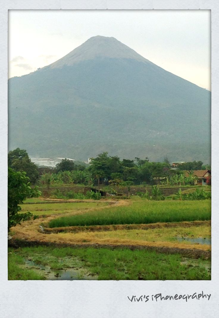 Mount Argo Puro as seen from Pasuruan-East Java. Copyrights Vivi Kembang Tanjoeng.