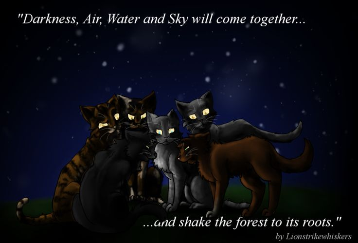 Warrior Cats Hollyleaf Quotes