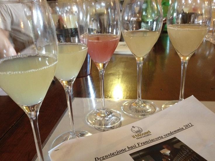 Primi assaggi dei vini base Franciacorta dell'annata 2012