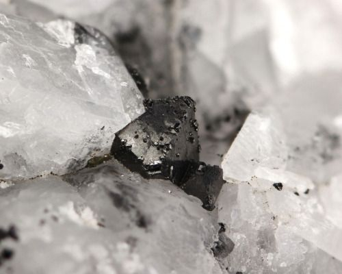 Magnetite and Calcite // Otamo dolomite quarry, Siikainen, Western and Inner Finland Region, Finland