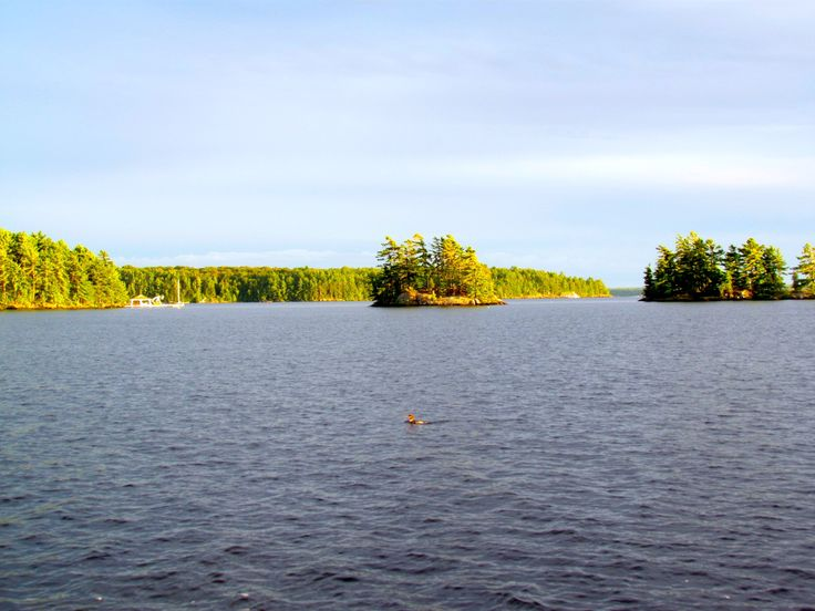 Lake Muskoka, Muskoka, ON