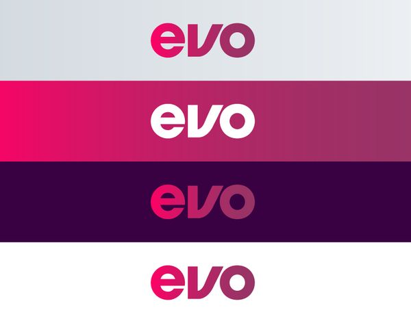 Identidade visual da EVO fitness
