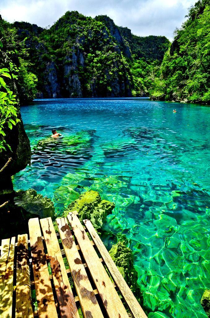 Regarder à travers l'eau I #Philippines I