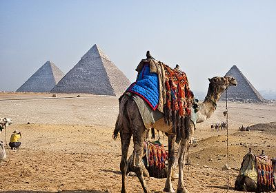 During Egypt Short Break Holidays , you can enjoy Short tours to explore Cairo , enjoy visiting famous Giza Three Pyramids of king Cheops , Chephren , Mykernuis then yu will move to see the wonderful Statue ) the Sphinx which Consist of a human head as a sign for the wisdom and body of lion a sign for power