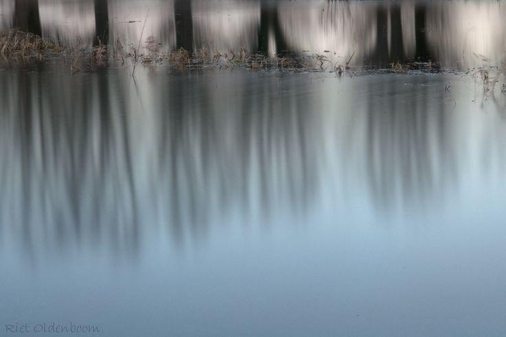 reflectie van bomen in het water bij aan de Wilpse dijk