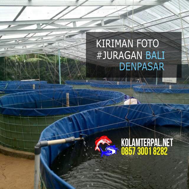 Kolam Terpal Bulat - Mulai diminati para pembudidaya ikan lele modern #budidayaikan #lele #kolamterpal