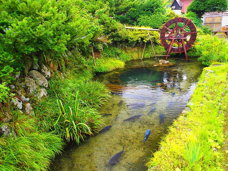 Pond near Nodaniya Ryokan Inn at Shirakawa-go, Japan