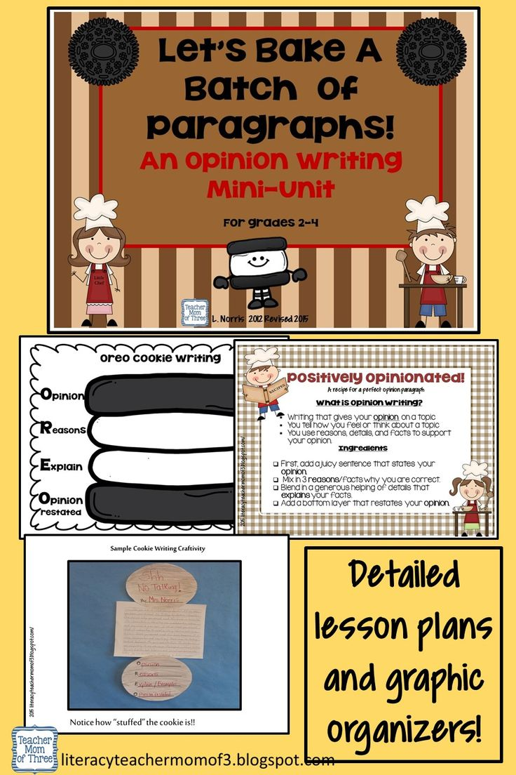 Mini lesson on writing a paragraph