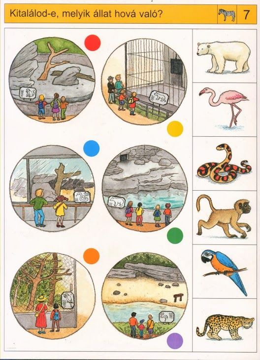 Welke dieren horen in welke hokken, free printable