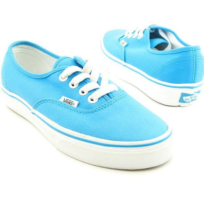 Blue Vans. I got some almost like this✨
