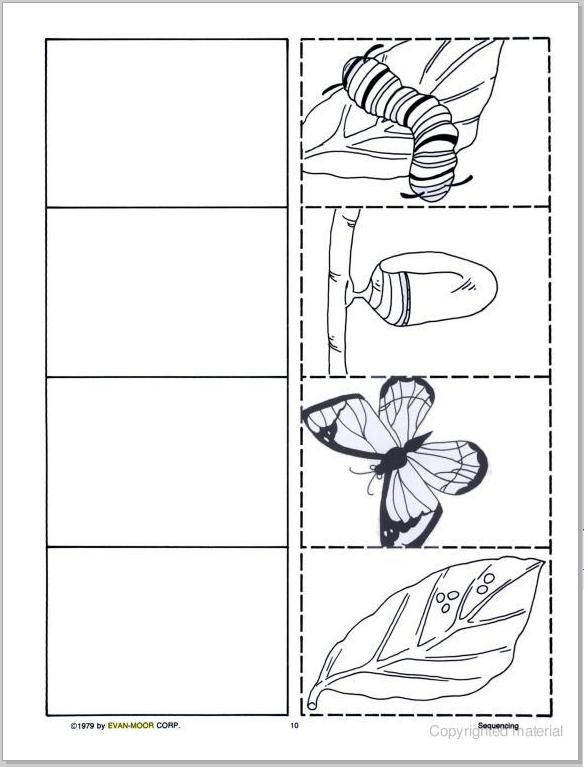 SEQUENCING MINI BOOKS (ANIMALS & PLANTS) | learningenglish-esl