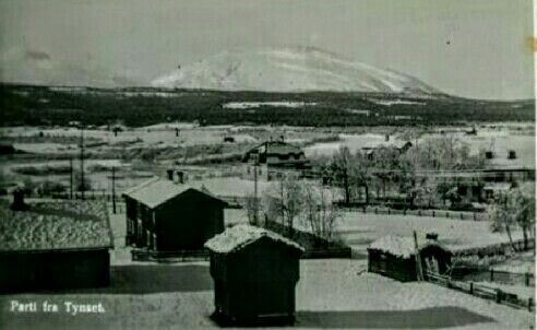 Parti fra Tynset kommune i Hedmark fylke. 1950-tallet