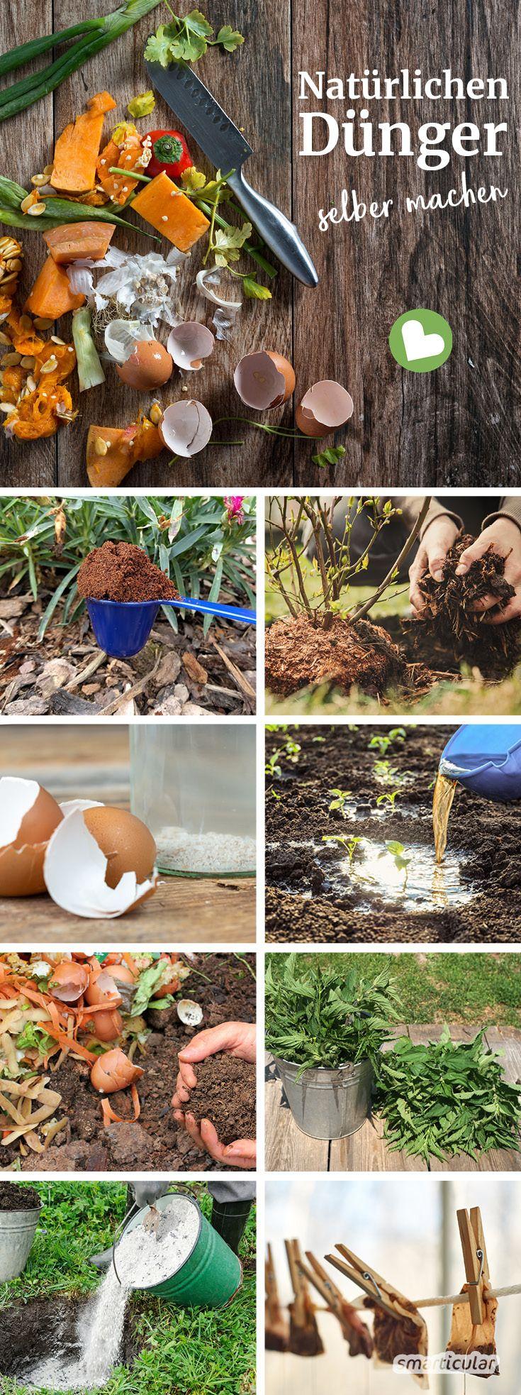 Organischer Dünger kann leicht selbst hergestellt werden: Küchenabfälle können …  – Selber machen statt kaufen – Garten und Balkon