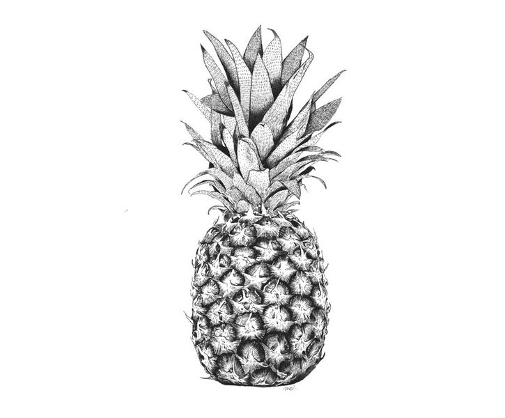 67 best peinture dessin fruit images on pinterest - Ananas dessin ...