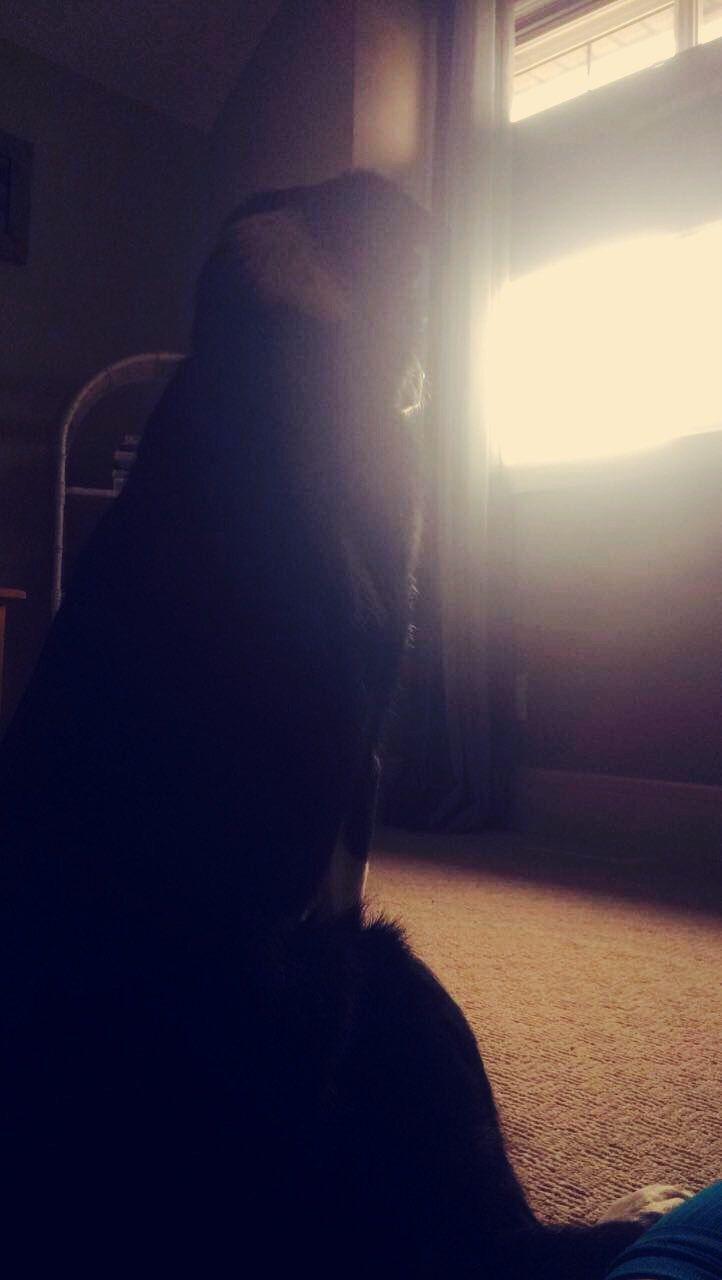 My puppy!❤