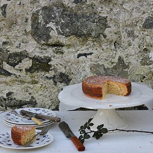 Milk & Honey Citrus Cake by Imen McDonnell.   Sweet and zesty citrus cake - perfect for afternoon tea.