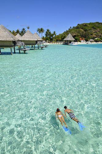 snorkeling at InterContinental Bora Bora  Le Moana Resort