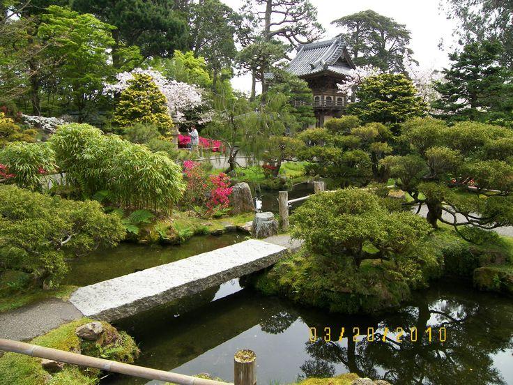 Japanese koi pond koi pond pinterest best japanese for Japanese garden koi