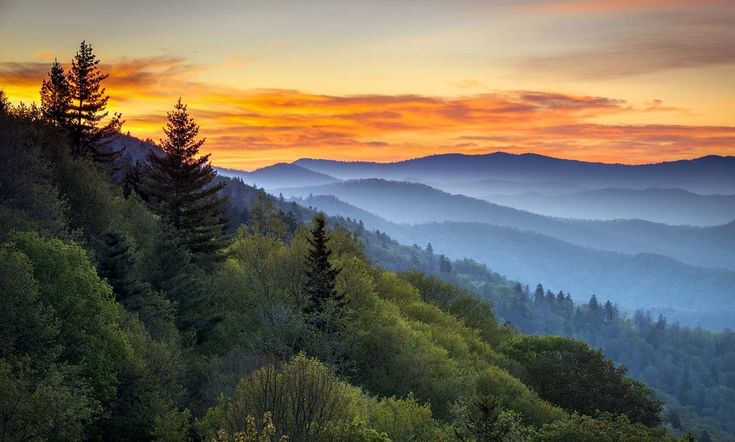 Oconaluftee Overlook - Smokey Mountains - Gatlinburg, TN Vinyl Print