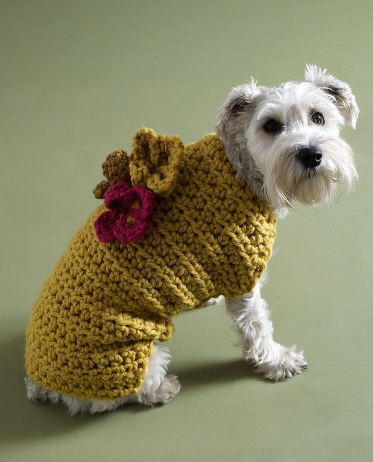 Free Dog Sweater Crochet Patterns Crafts Crochet Knitting Both