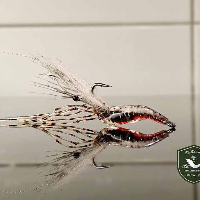 All in BioShrimp's this week. #flytying #flyflasher #flydreamdotse #searunbrown #flugfiske #flugbindning #solarez #ahrexhooks