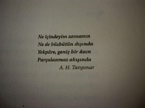 Ahmet Hamdi T.