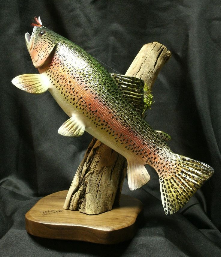 Amazon rainbow trout sculpture sports outdoors