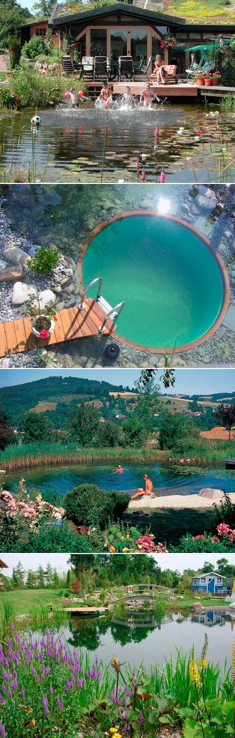 M s de 25 ideas incre bles sobre piscinas naturales en for Piscina sustentable