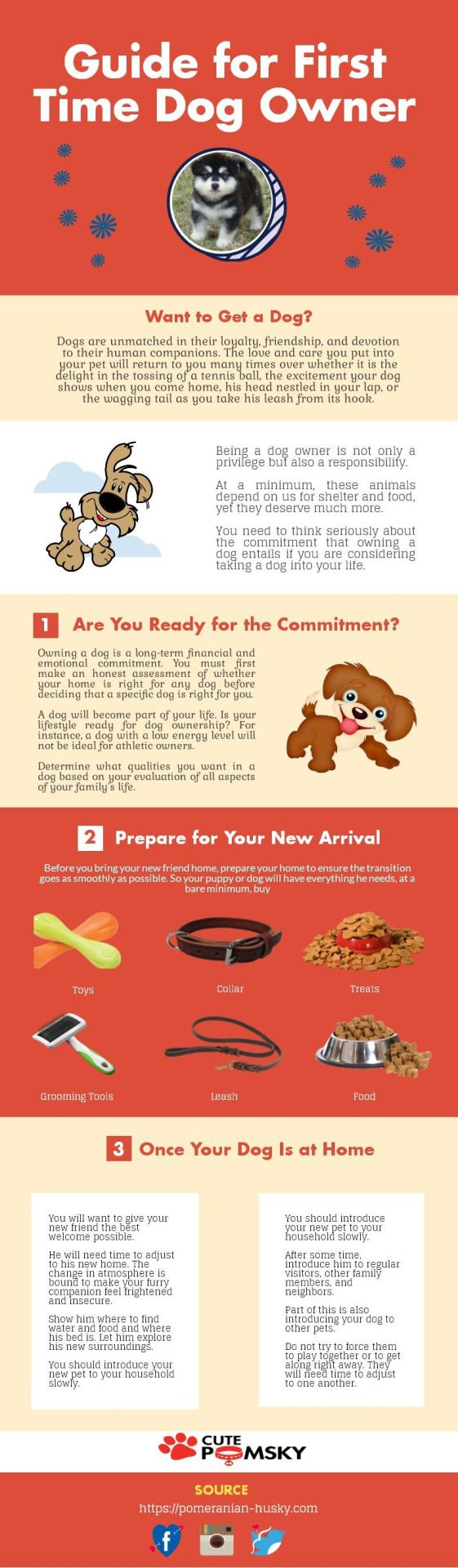 Points to Remember for the first time Dog Owner Thinking about getting your first dog? If so then stop and see this image first. This image will help you a lot in caring for them and you may get more useful information about it.