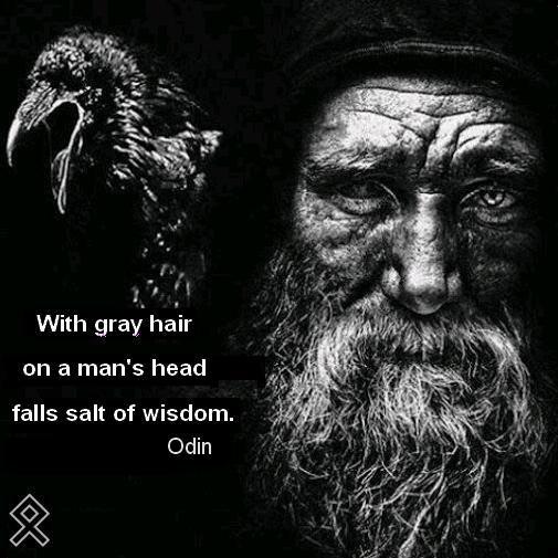118 Best Images About Viking Memes On Pinterest