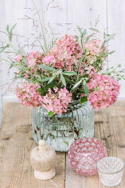 die besten 25 rispenhortensie ideen auf pinterest hydrangea paniculata vanille pflanze und. Black Bedroom Furniture Sets. Home Design Ideas