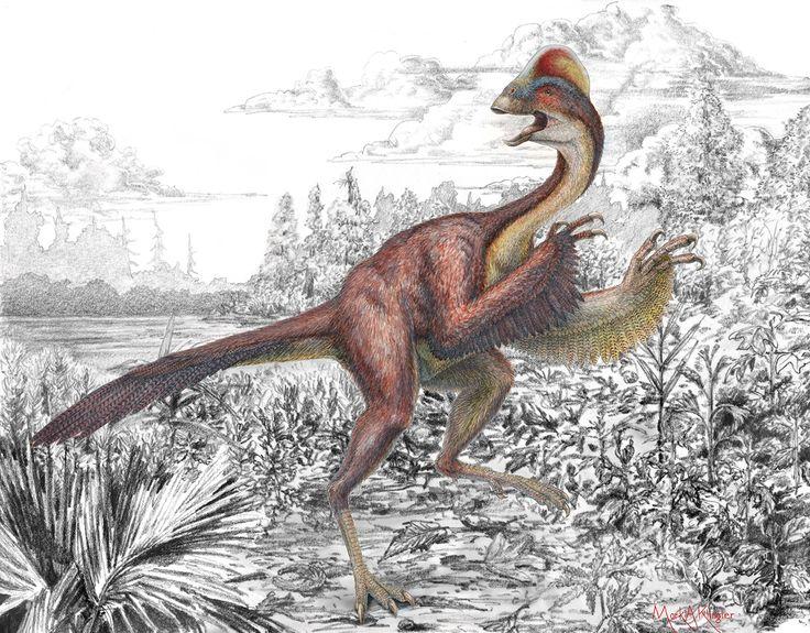 Dinosaure à plumes, guêpe croque-mort... : dix étonnantes nouvelles espèces