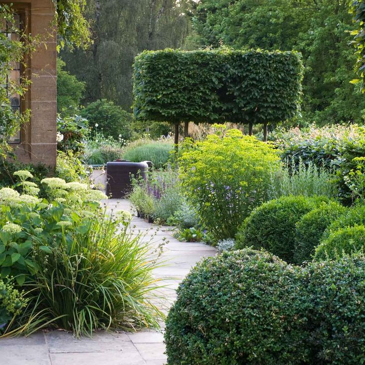 6243 best classic landscape images on pinterest for Structural plants for small gardens