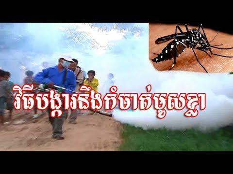 វិធីបង្ការនឹងកំចាត់មូសខ្លា,mosquito prevention,mosquito killer machine