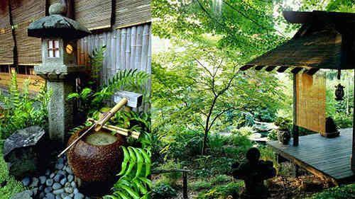 Taman depan rumah sentuhan Jepang #taman #tamanrumah #tamanjepang